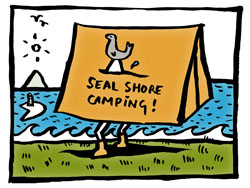 Anna Keen cartoon of seal shore camping